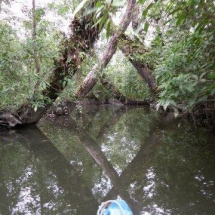 Bahia Malaga - Bicivan Kayak Colombia (11 de 32).jpg