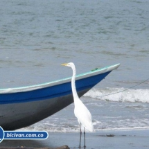 Bahia Malaga - Bicivan Kayak Colombia (29 de 32).jpg