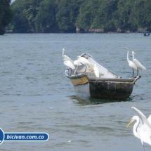 Bahia Malaga - Bicivan Kayak Colombia (31 de 32).jpg