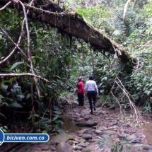 Ruta de las Cascadas Bahia Malaga- Bicivan Kayak Colombia0049.jpg