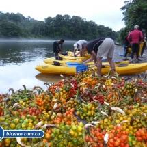 bicivan-tour-kayak-rio-anchicaya-sabaletas-valle-del-cauca-pacifico-colombia-46-jpg