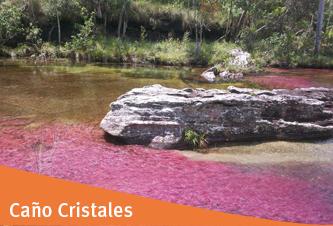 Turismo en Caño Cristales