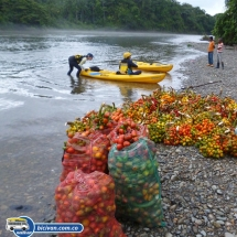 bicivan-tour-kayak-rio-anchicaya-sabaletas-valle-del-cauca-pacifico-colombia-45-jpg